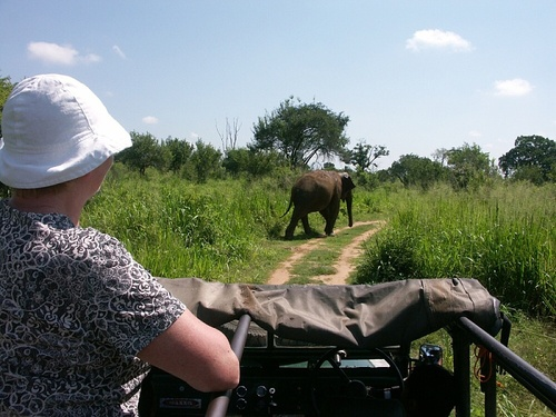 Photo of Udawalawe National Park in the TripHappy travel guide