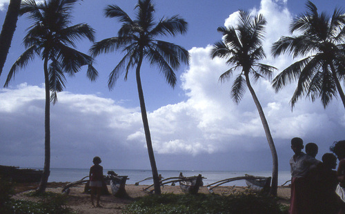 Photo of Tangalle in the TripHappy travel guide