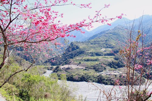 Photo of CingJing Farm in the TripHappy travel guide