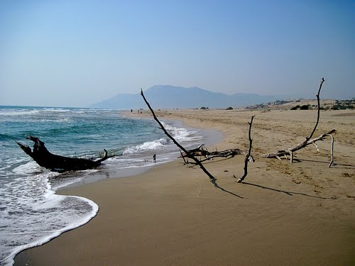 Featured medium photo of Patara Plaji on TripHappy's travel guide