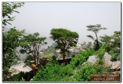 Photo of Taiz in the TripHappy travel guide