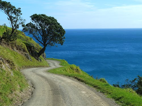 Featured medium photo of Hauraki Gulf on TripHappy's travel guide