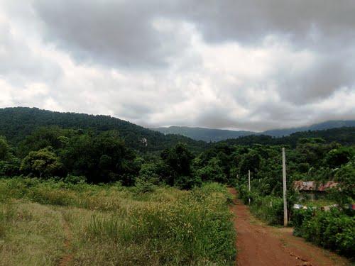 Euphoria Spice & Herbal Sri Lanka Travel Guide | Tips, Reviews
