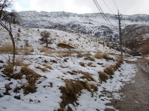 Featured medium photo of Kurdistan Region on TripHappy's travel guide
