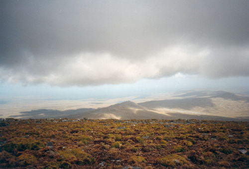 Photo of East Falkland in the TripHappy travel guide