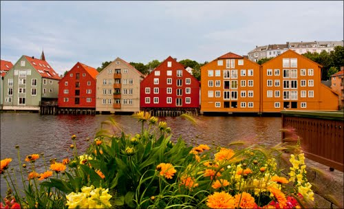 Photo of Trondheim in the TripHappy travel guide