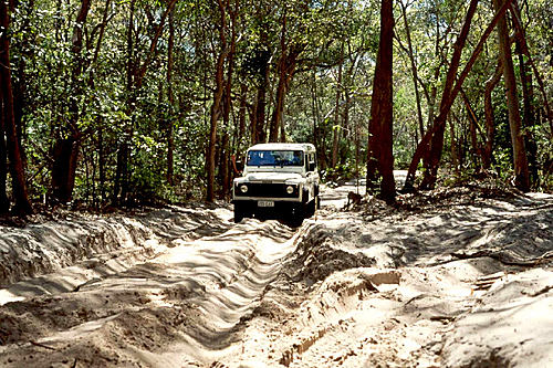 Photo of Fraser Island in the TripHappy travel guide