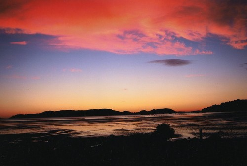 Photo of Coromandel in the TripHappy travel guide