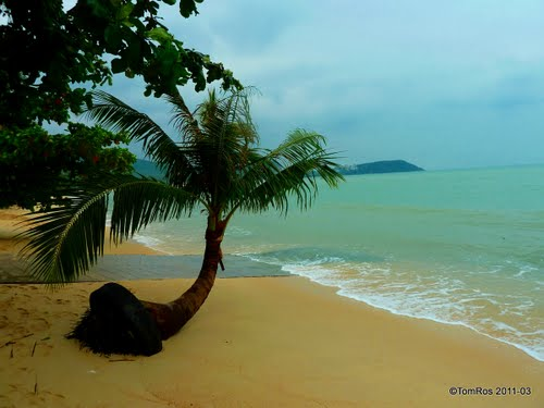 Featured medium photo of Ko Samui on TripHappy's travel guide
