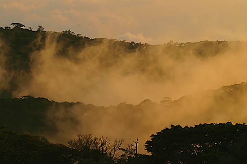 Photo of Monteverde in the TripHappy travel guide