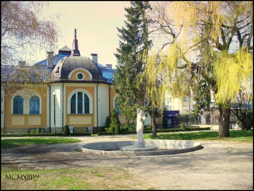 Featured medium photo of Vidin on TripHappy's travel guide
