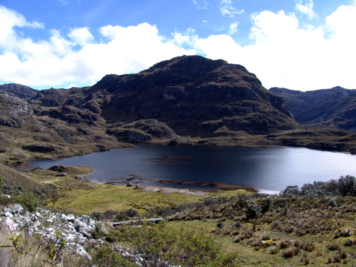 Photo of Cajas in the TripHappy travel guide