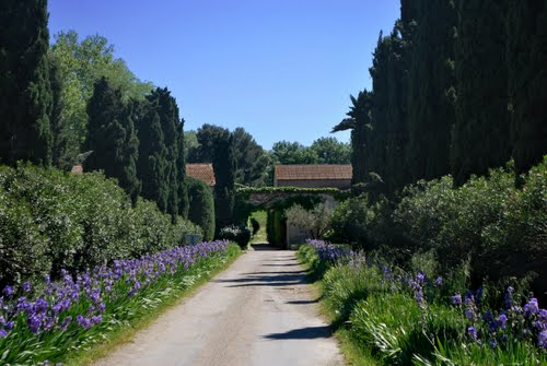 Photo of Arles in the TripHappy travel guide