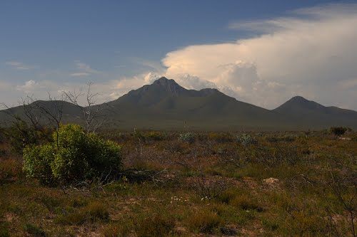 Photo of Stirling Range National Park in the TripHappy travel guide