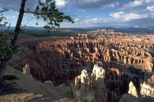Photo of Bryce in the TripHappy travel guide