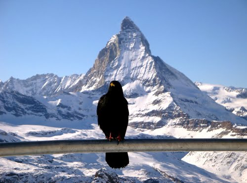 Featured medium photo of Matterhorn Glacier Paradise on TripHappy's travel guide