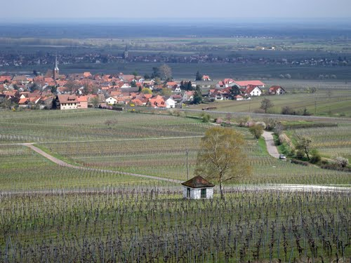 Featured medium photo of Edesheim on TripHappy's travel guide