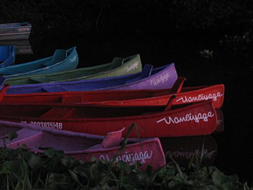Featured medium photo of Laguna Sontecomapan on TripHappy's travel guide