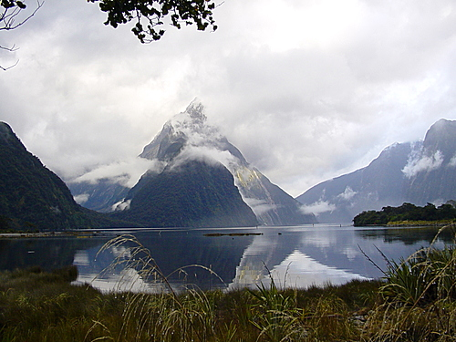 Featured medium photo of Milford Sound on TripHappy's travel guide