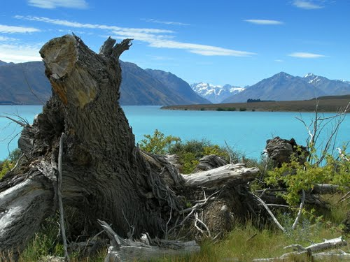 Featured medium photo of Lake Tekapo on TripHappy's travel guide