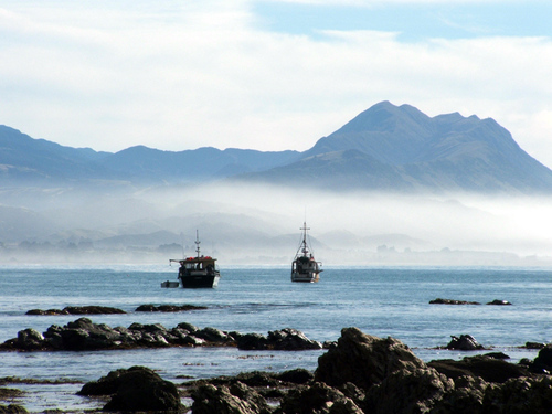 Featured medium photo of Kaikoura on TripHappy's travel guide