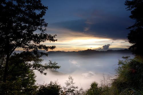 Photo of Alishan National Scenic Area in the TripHappy travel guide