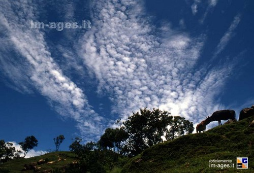 Photo of Nuwakot in the TripHappy travel guide