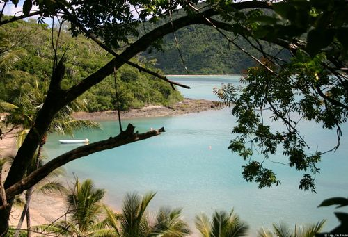Featured medium photo of Whitsundays on TripHappy's travel guide