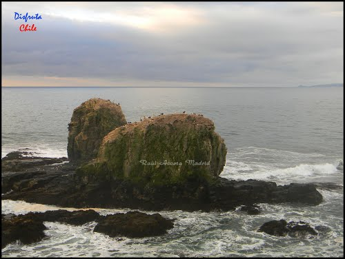 Featured medium photo of Pichilemu on TripHappy's travel guide