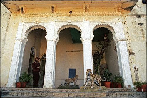 Featured medium photo of Kodiyat on TripHappy's travel guide