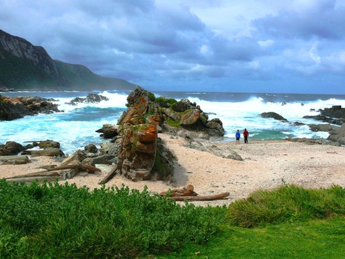 Featured medium photo of Tsitsikamma National Park MPA on TripHappy's travel guide