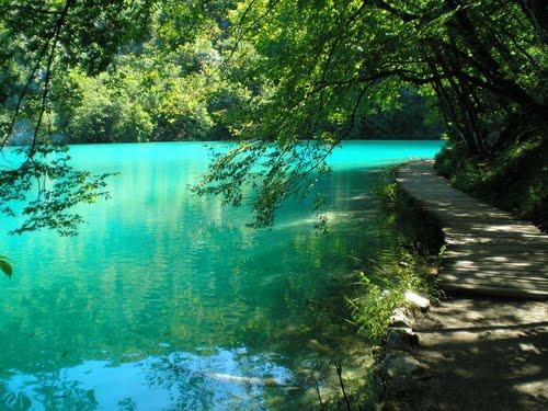 Featured medium photo of Plitvička Jezera on TripHappy's travel guide