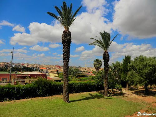 Photo of Meknes in the TripHappy travel guide