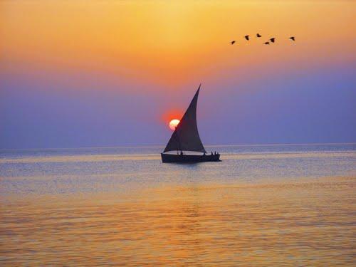 Featured medium photo of Zanzibar Town on TripHappy's travel guide