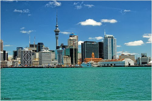 Photo of Auckland in the TripHappy travel guide