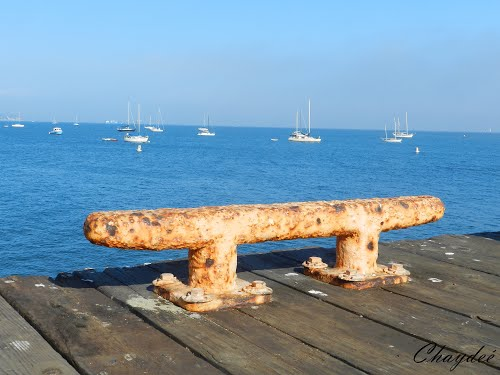 Featured medium photo of Santa Barbara on TripHappy's travel guide