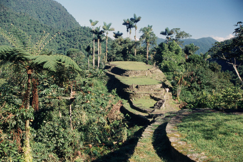 Photo of Ciudad Perdida in the TripHappy travel guide