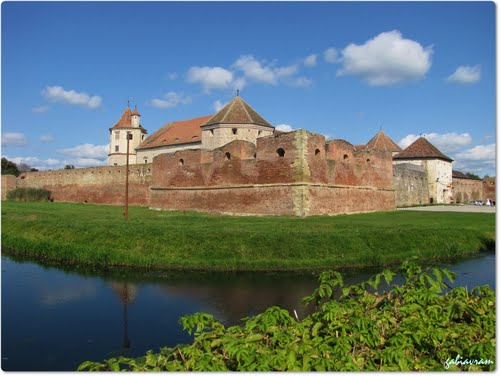 Photo of Făgăraș in the TripHappy travel guide