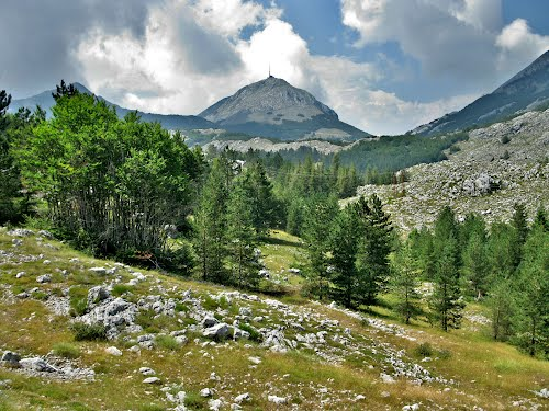 Photo of Lovcen National Park in the TripHappy travel guide