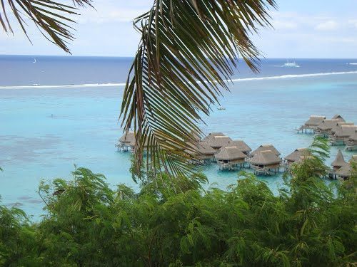 Featured medium photo of Mo'orea on TripHappy's travel guide