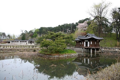 Photo of Gangneung-si in the TripHappy travel guide