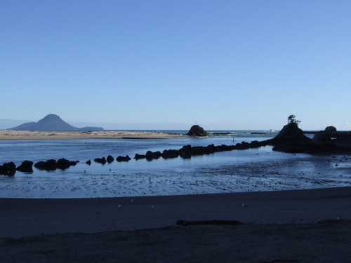 Photo of Whakatane in the TripHappy travel guide