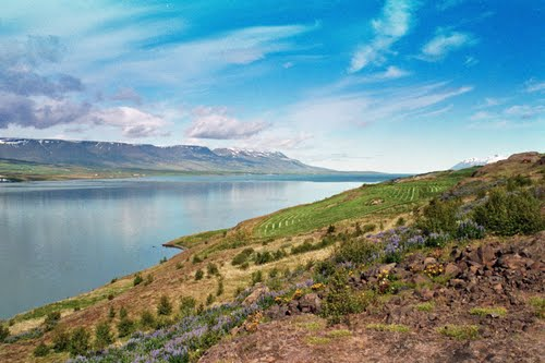 Photo of Akureyri in the TripHappy travel guide
