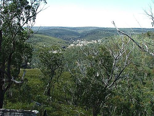 Featured medium photo of Blue Mountains on TripHappy's travel guide