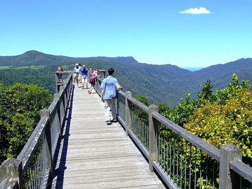 Photo of Dorrigo in the TripHappy travel guide