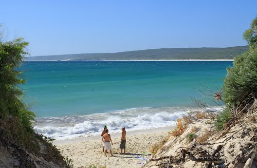 Photo of Hamelin Bay in the TripHappy travel guide