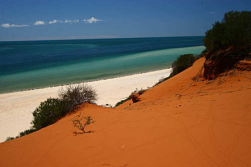 Photo of Shark Bay in the TripHappy travel guide