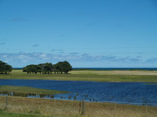 Featured medium photo of Port Fairy on TripHappy's travel guide