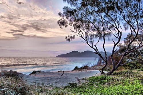 Featured medium photo of Forster on TripHappy's travel guide