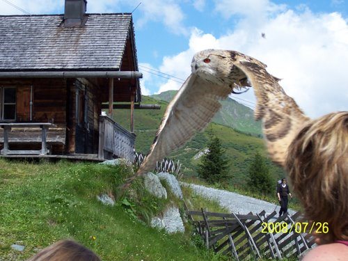 Photo of Rauris in the TripHappy travel guide